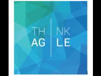 Think Agile (Pty) Ltd logo