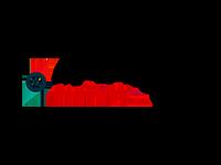Agile Leader Academy logo
