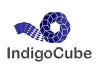 IndigoCube